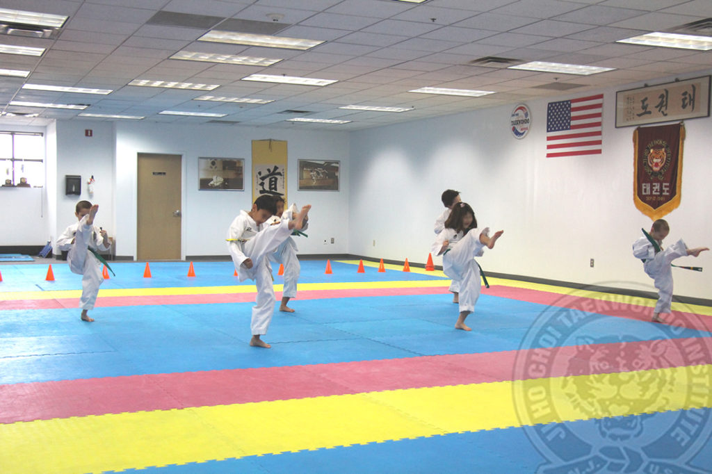 jihochoi-taekwondo-institute-contact-us-header-v2-fl