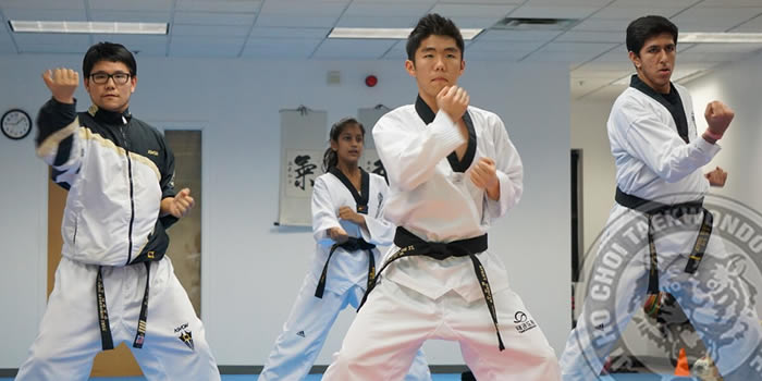 jihochoi-taekwondo-institute-programs-header-fl