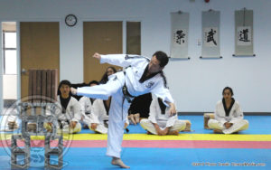 jihochoi-taekwondo-institute-grand-master-choi-breaking-6-cement-blocks-d-fl