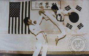 jihochoi-tkd-inst-gm-choi-sparring-jump-kick-fl