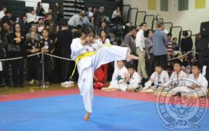 jihochoi-taekwondo-institute-2016-garden-state-cup-championships-xx-november-poomse-d-fl