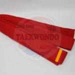 jihochoi-taekwondo-institute-red-jr-belt-fl