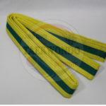 jihochoi-taekwondo-institute-sr-yellow-belt-header-fl
