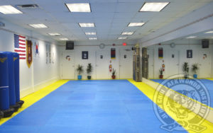 jihochoi-tkd-inst-bedminster-nj-1st-floor-fl
