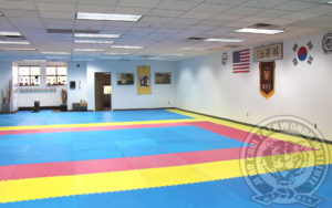 jihochoi-tkd-inst-bedminster-nj-2nd-floor-fl
