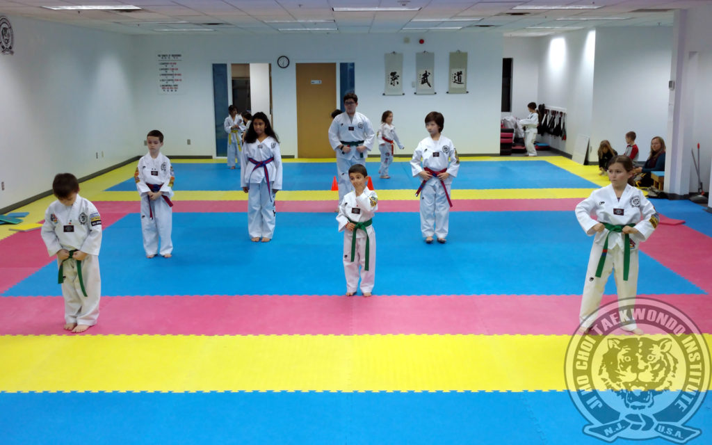 jihochoi-taekwondo-institute-dec-2016-belt-test-fl