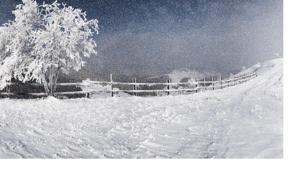 jhc-tkd-snow-storm-dojang-closed-fl