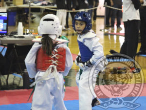 jhc-tkd-garden-state-cup-xxi-2017-11-06-a-sparring-fl