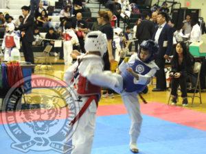 jhc-tkd-garden-state-cup-xxi-2017-11-06-s-sparring-fl