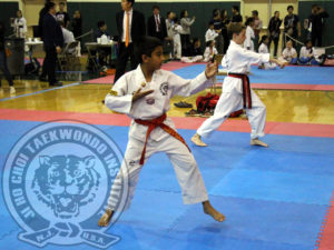 jhc-tkd-garden-state-cup-xxi-2017-11-06-w-concentration-2-fl